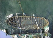 Offshore Salvage